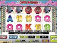 Slip Away To The Exotic And Play Cherry Blossoms Slots
