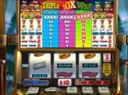Triple 10X Wild Slots Review